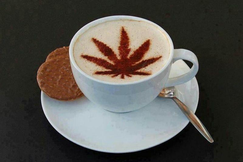 Kávé és a fű